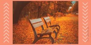 Friday Favorites- Fall Edition